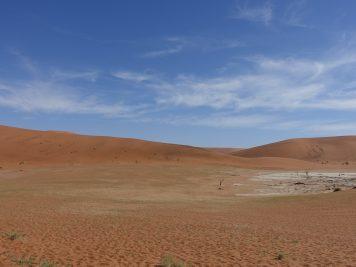 Namibia, Grassteppe