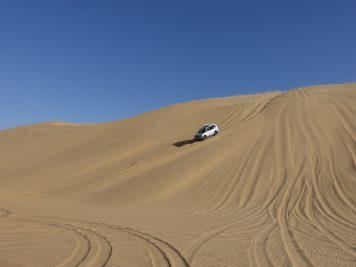 Jeep, Wüste, Safari