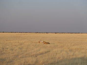 Rotel Tours, Namibia, Wanderreise