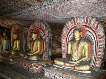 Rundreise durch Sri Lanka mit Rotel Tours