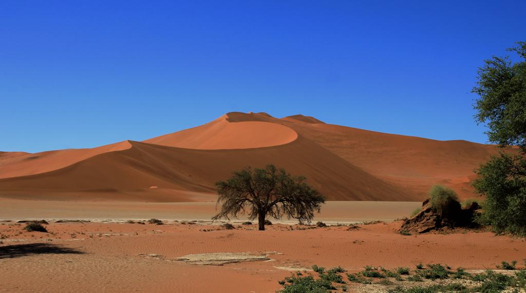 Sanddünen von Sossusvlei
