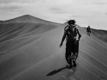 Namibia, Wüste, Düne, Namib, Sanddüne